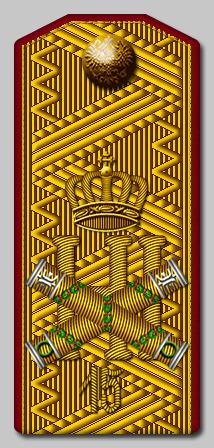 Генерал фельдмаршал 15 й стрелковый е